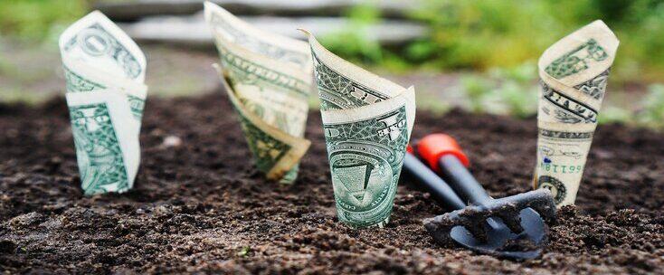 Renda Fixa: o que é, como funciona e como investir?